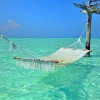 Swing in the sun
