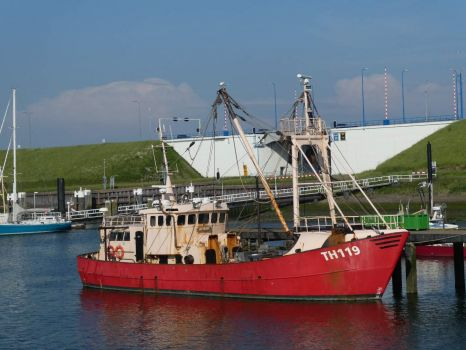 The fishing boats harbour of Stellendam. Here all fishing boats of the area unload (sell) their load on Friday morning