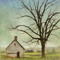 Sylvania Farm Slave Quarters