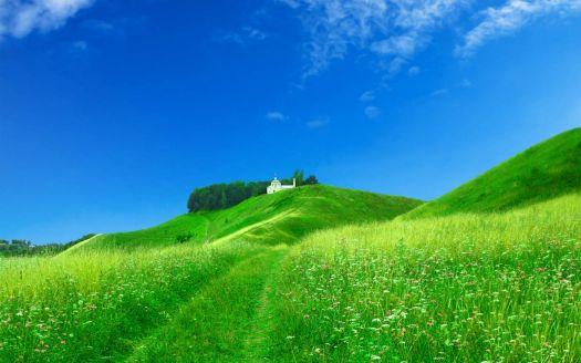 dream-spring