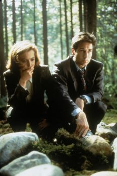 The X Files: woodland adventure edition. (simpler version)