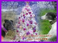Merry Christmas for you dear Lorna ♥♥♥