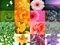 Spring Colors Mosaic - Large