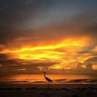Pass-A-Grille Beach, Florida USA