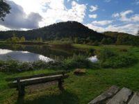 Pfälzer Wald - Germany