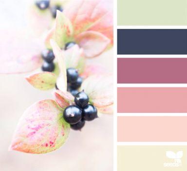 ColorNature1_150