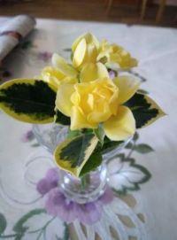 Malá vazička - malá růžička