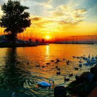 Balaton-sunset