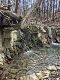 ~~🐦 Raven creek 🐦~~
