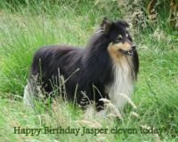 Happy Birthday Jasper