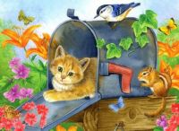 Kitty in a Mailbox