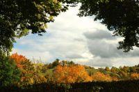 Durchblick auf den Herbst