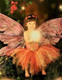 My Little Fairy