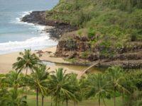 McBride Gardens ~ Kauai