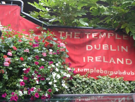The Templebar,Dublin