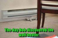 Aw heat