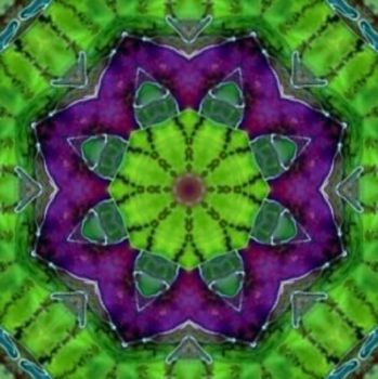Kaleidoscope made from a Bromeliad