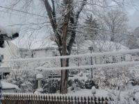 Winter scenery from my backyard