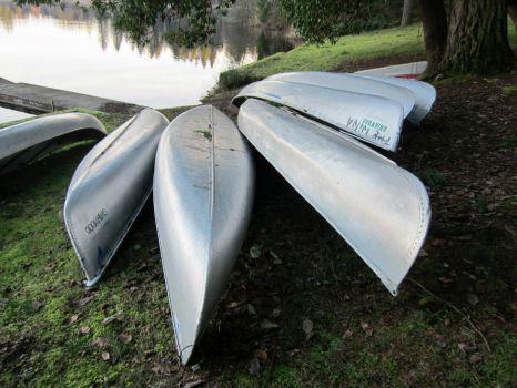 canoe fan