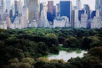 An island of nature in an urban sea; Central Park, NY