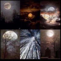 ~For moon lovers 🌕~