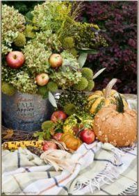 Autumn, Fall, Apples