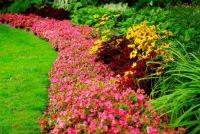 Amazing gardens (14)