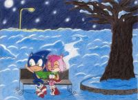 Sonic & Amy on a snowy winter day