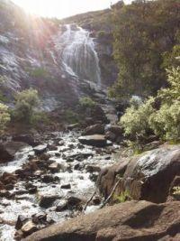 Morning at Lesmurdie Falls Western Australia