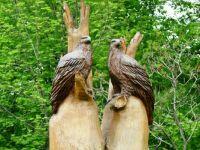 On Wood