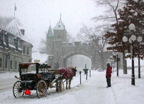 Carriage, Old Quebec City