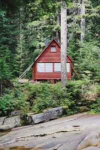 Red Forest Cabin