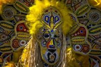 Mardi Gras ~ Yellow Indian