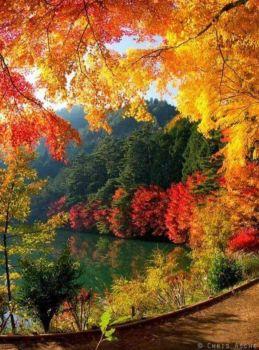 Kouzlo podzimu...