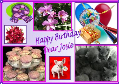 Happy Birthday Josie Feb 13