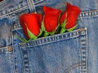 Pocket roses