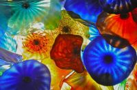 Glass Art - Dale Chihuly