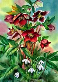 Spring is Here! Red Hellebores and Snowdrops, a painting by Ann Mortimer