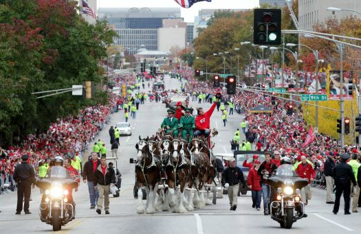 Famous Anheuser-Busch Clydesdales - 3