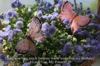 THANK YOU, TO ALL OF MY FRIENDS ON JIGIDI....