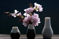 Cherry Blossoms in Black & Gray Vases