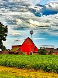 Red Barn and Soy Bean Field....Great Sky...