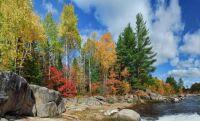 Autumn's Colors - New Brunswick, Canada