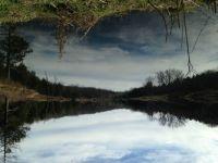 Betsy's Lake 1