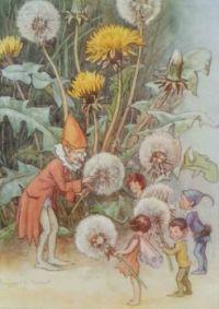 Dandylion fairies