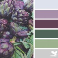 nature-colors-palette-design-seeds-jessica-colaluca-3