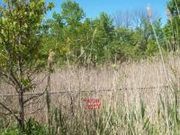 Fenced Off Rugged Upper Rouge Valley along Bike Trail