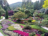 Burkhardt  Gardens