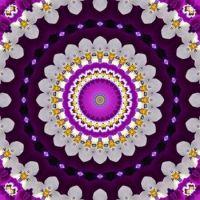 kaleidoscope 386 purple and white medium