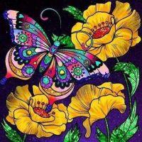 Un papillon multicolore
